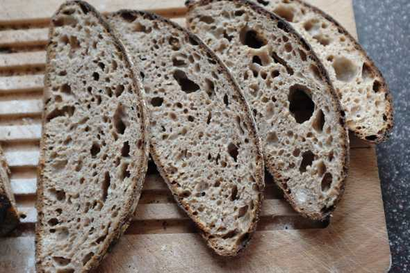 "A close-up photograph of the crumb of the ""Wholemeal Sourdough with a Splash of Rye"" bread"